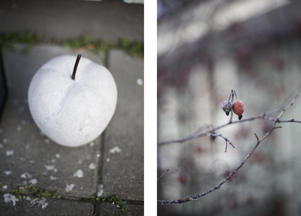 collage_januari2
