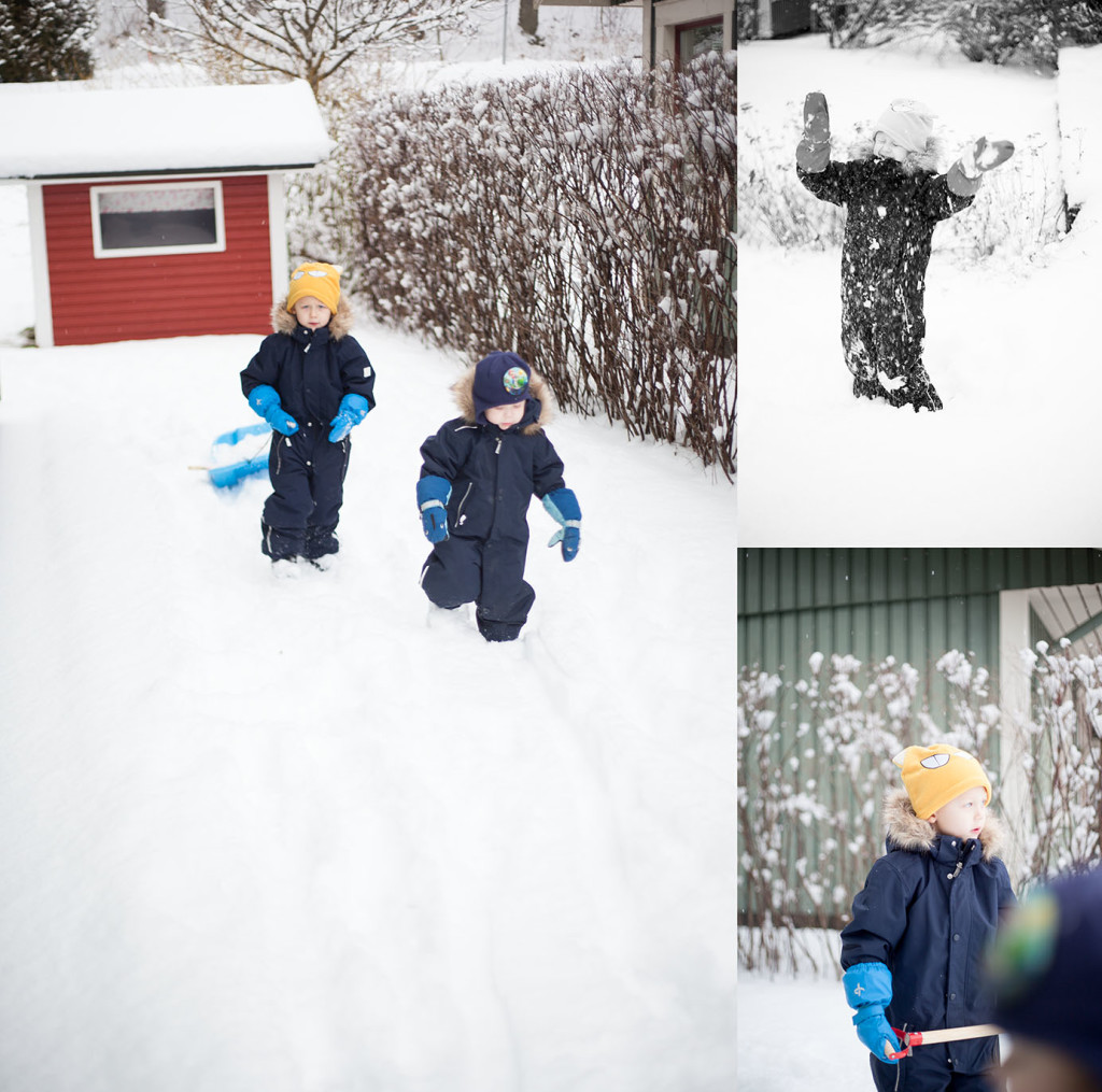 collage_snö