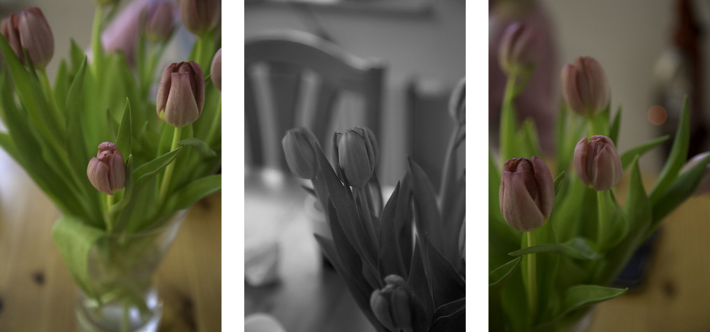 collage_blommor