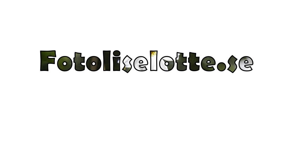 fotoliselotte_tag